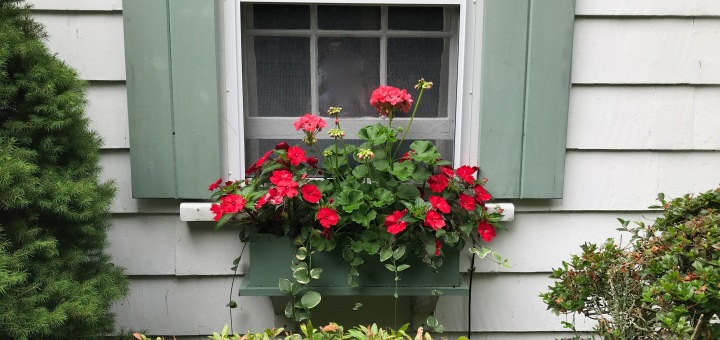 bedroom window box 2