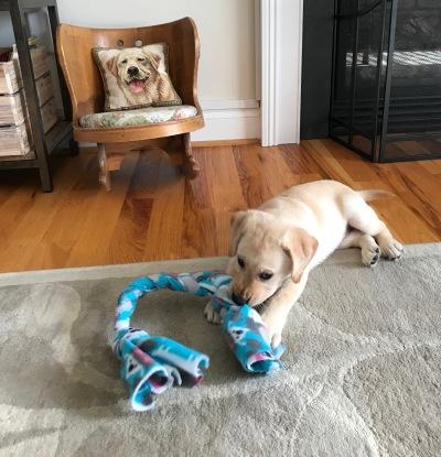raffa with toy 2