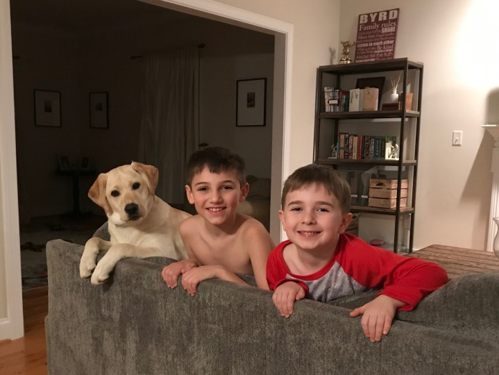 dog and boys
